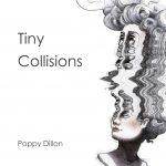 Poppy Dillon Tiny Collisions